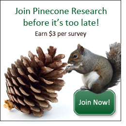 pinecone banner